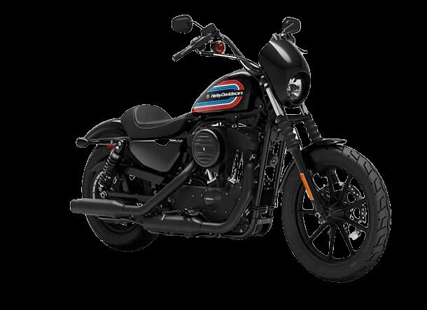 IRON-1200-IESA-Harley-Davidson